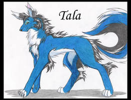 Tala by Kimai