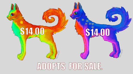 adopts by KALMASIS