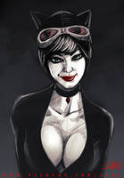 45 mins sketches - Catwoman by SabuDN