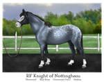 RF: Knight of Nottingham