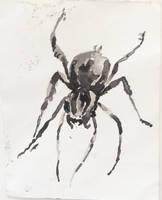 Inktober 20, Wolf Spider by SoothSheeper