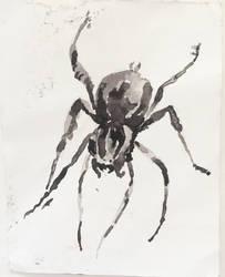 Inktober 20, Wolf Spider