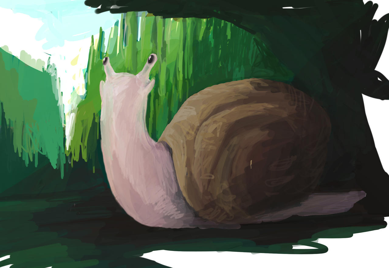 Snail by SoothSheeper