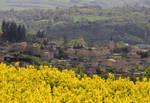 printemps au village