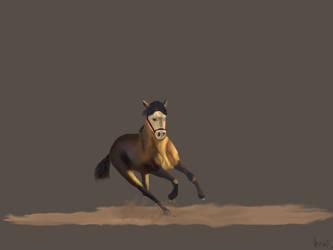 Kili Horse