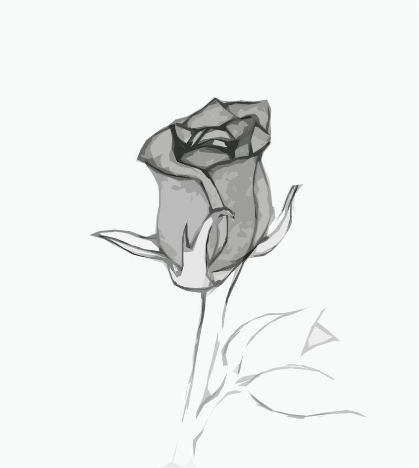 hoontoidly single black rose drawings images