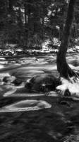 Iced Over by JCMillard