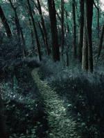 Secret Path by JCMillard