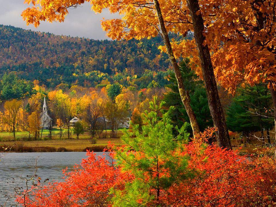 Colors of Fall by Lambieb123