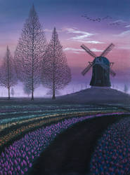 Tulip Field Windmill