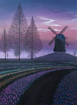 Tulip Field Windmill