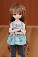 Taiga MDD by chun52
