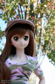 Nyanko and a hint of Autumn