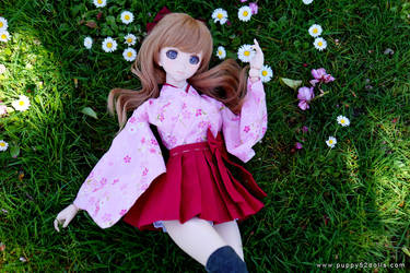 Saya and daisies :D