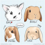 The Bunny bunch - Eddy Rambo Marbles Olive