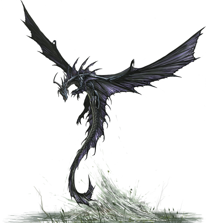 Black Dragon, take off