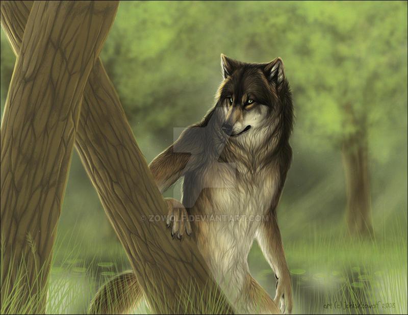 June 2009 by zowolf