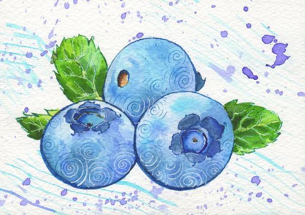 Fruit project #2 Blueberries by Lelixiana
