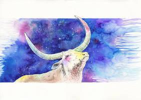Buffalo Constellation