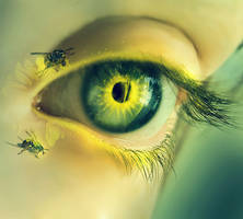 Summer Eye by lorency