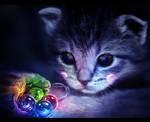 Nyan cat - The beginning