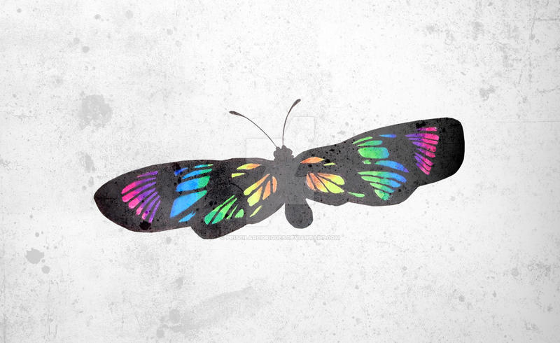 Butterfly by priscilarodrigues