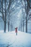 Winters Embrace by Zephyrsior