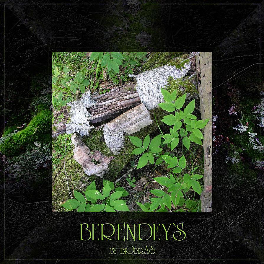 Berendeys 17 by inObrAS