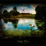 Silent Pond 2