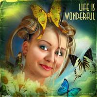 Life is Wonderful by inObrAS