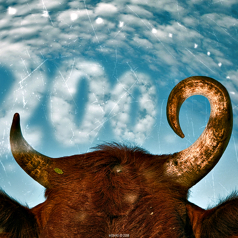 Happy Ox Year by inObrAS