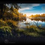 Serene Lagoon