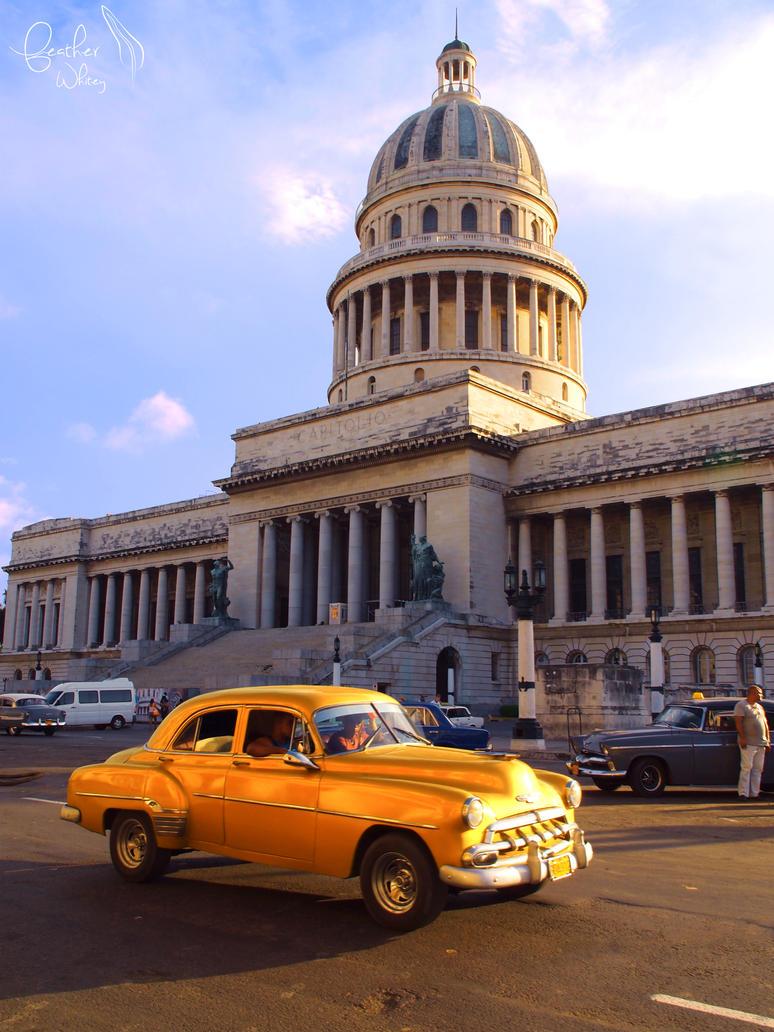 Havana's Brilliance by featherwhitey
