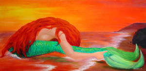 The Mermaid Washed Ashore