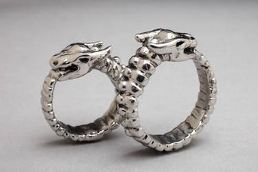 Ouroboros Ring by DaveRichardsonArt