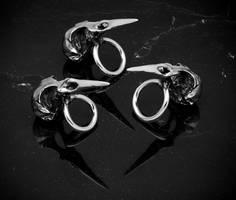 BLACKBIRD SKULL RING