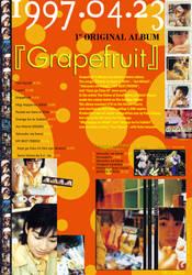 Grapefruit 'Information Ad' I