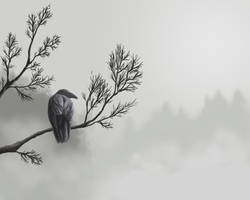 Study of a raven by RobinAhlstrom