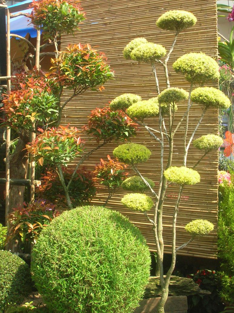 Zen Garden By White Animone On Deviantart