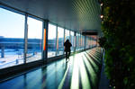 Walking in the airport by Stoy