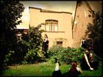 clones in a garden