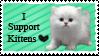 I Support Kittens