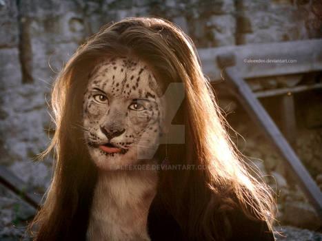 Leopard manipulation