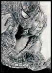 .Spiderman 2.