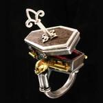 Locking Coffin Ring with Key