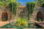 Empire Mine Water Garden