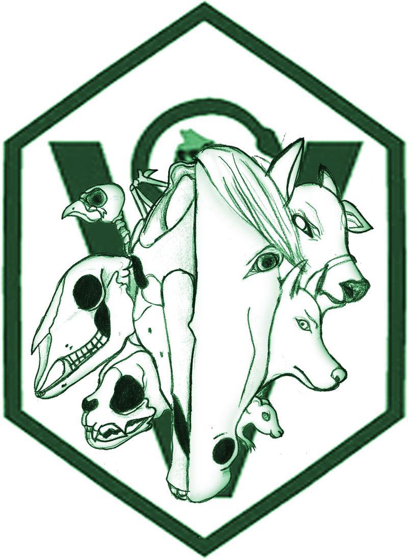 Veterinary Technician Designs  Home  Facebook