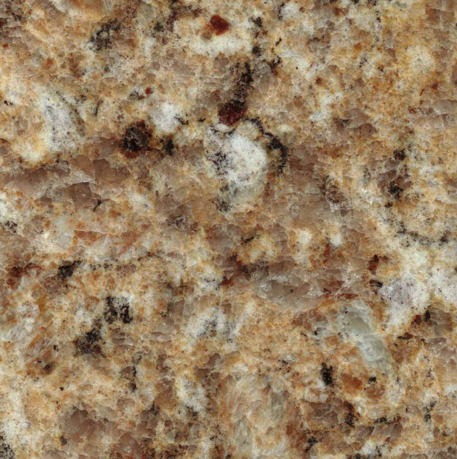 Brown White Granite by Cynthetic