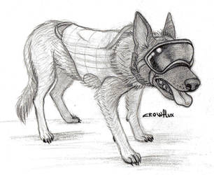 Soldier doggo by Crowflux