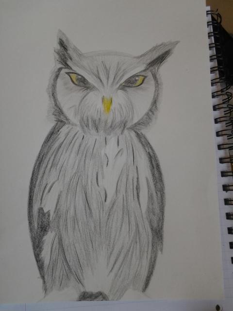 owl by Evil-Alice8